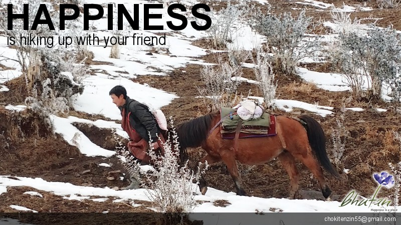 Happiness is hiking up with your friend