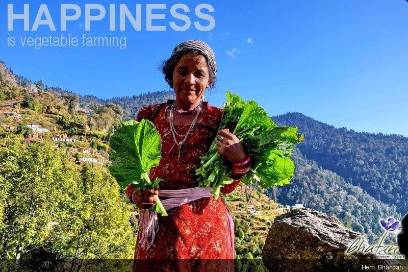 Happiness is vegetable farming