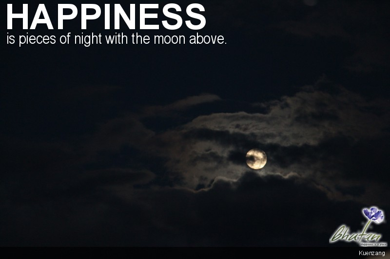 Happiness is pieces of night with the moon above.