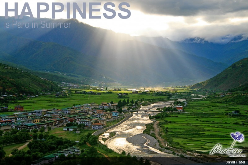 Happiness is Paro in Summer