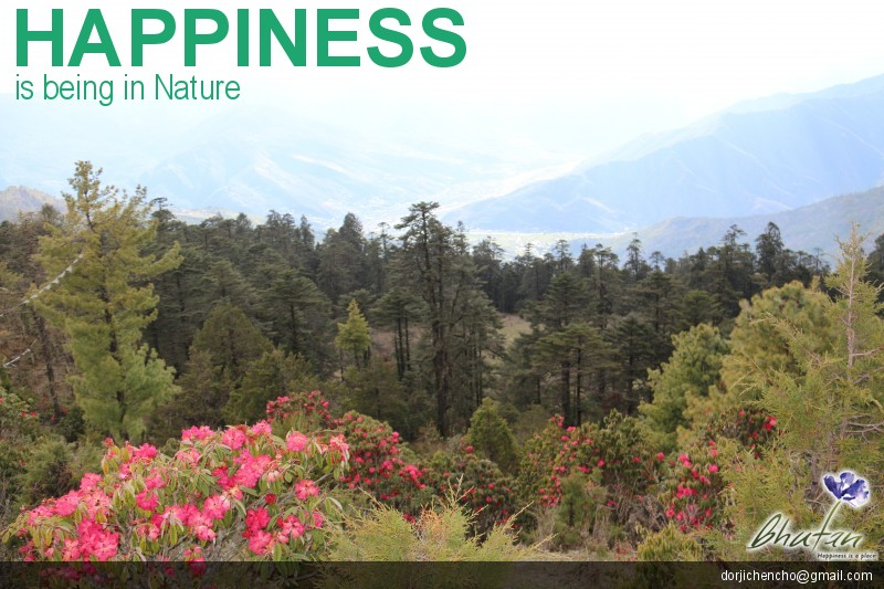 Happiness is being in Nature