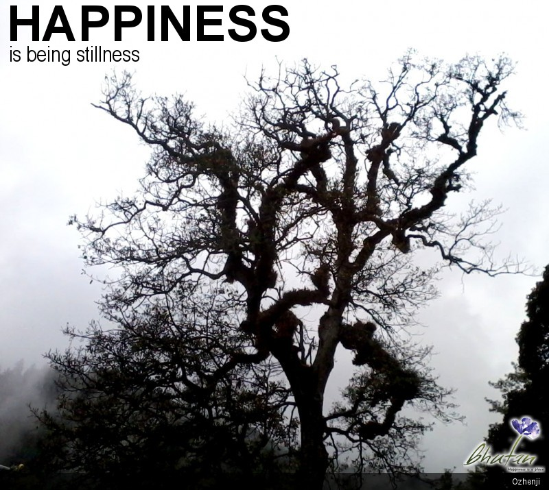 Happiness is being stillness