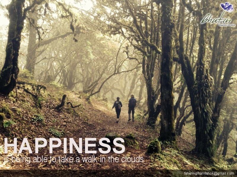 Happiness is being able to take a walk in the clouds