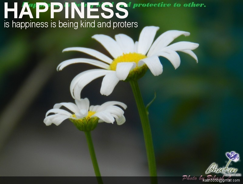 Happiness is happiness is being kind and proters