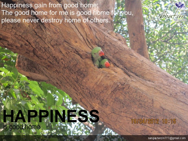 Happiness is good home