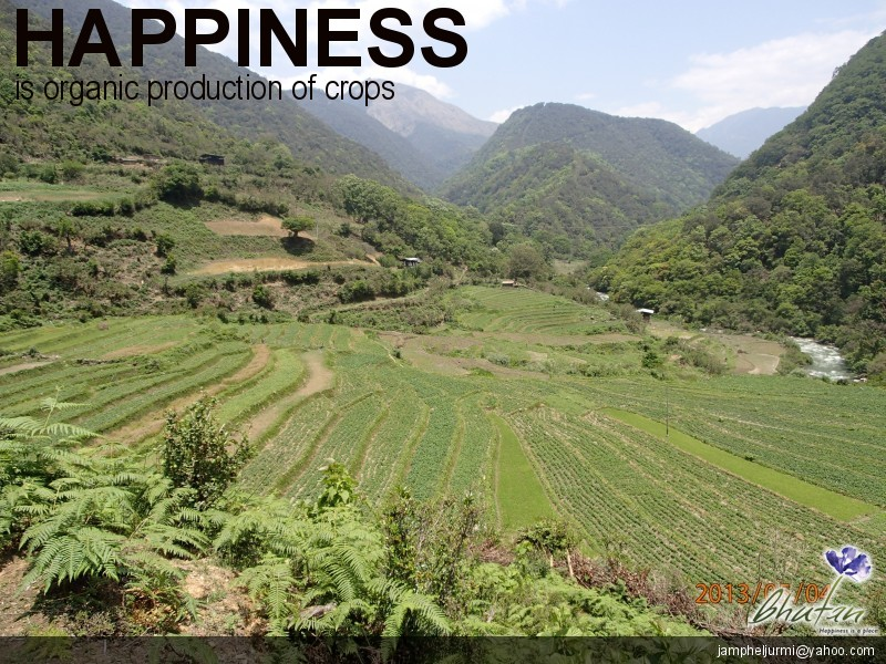 Happiness is organic production of crops