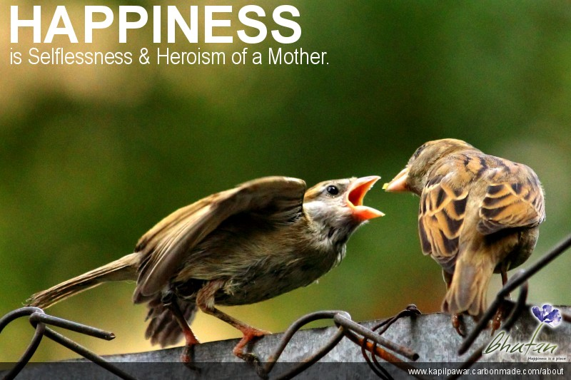 Happiness is Selflessness & Heroism of a Mother.