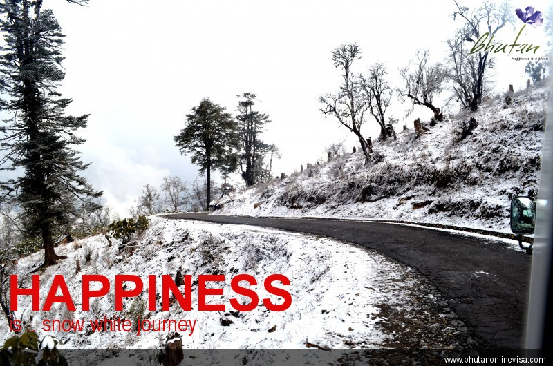 Happiness is .. snow white journey