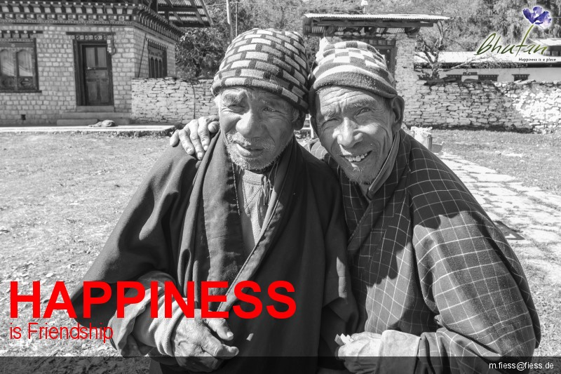 Happiness is Friendship