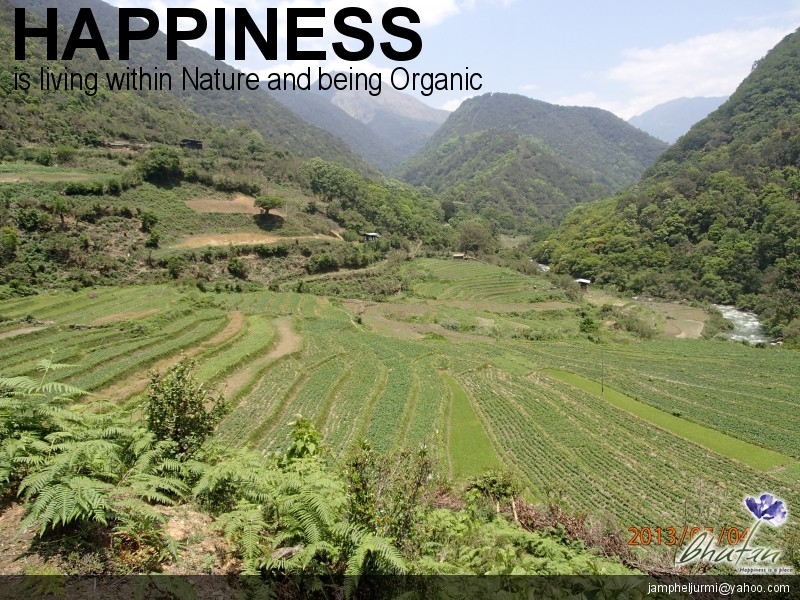 Happiness is living within Nature and being Organic