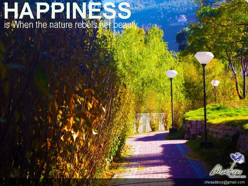 Happiness is When the nature rebels her beauty