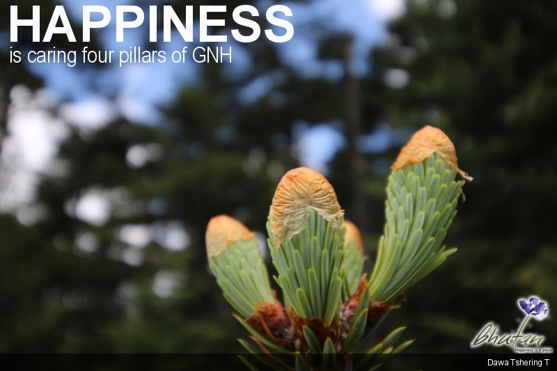 Happiness is caring four pillars of GNH