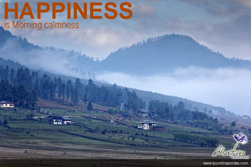Happiness is Morning calmness