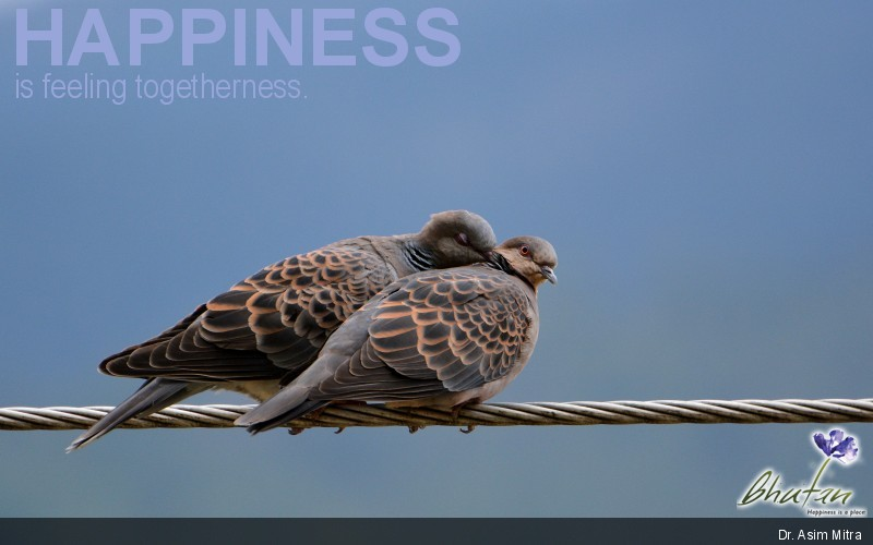 Happiness is feeling togetherness.
