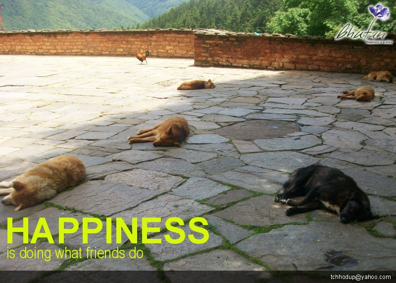 Happiness is doing what friends do
