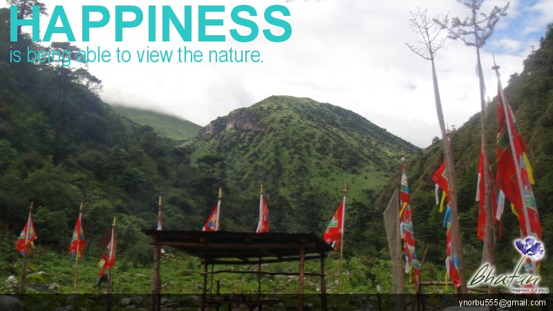 Happiness is being able to view the nature.