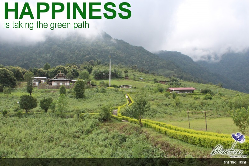 Happiness is taking the green path
