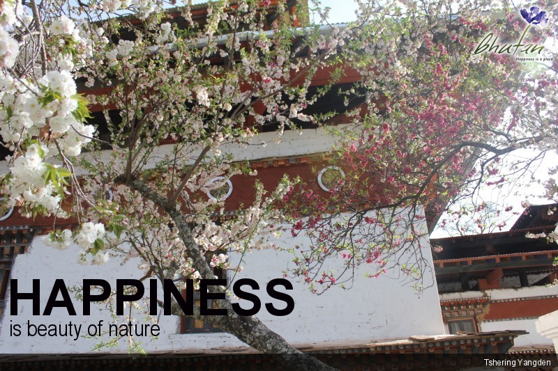 Happiness is beauty of nature