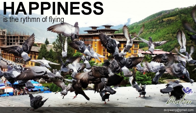 Happiness is the rythmn of flying
