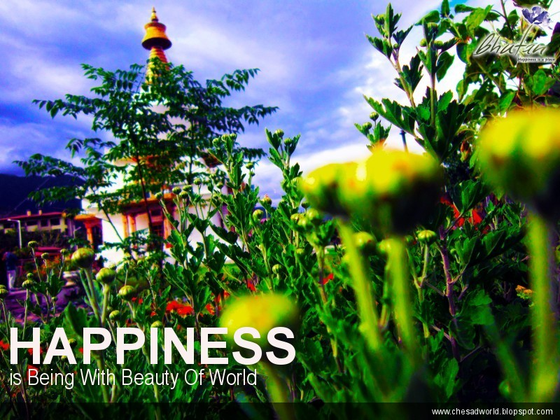 Happiness is Being With Beauty Of World