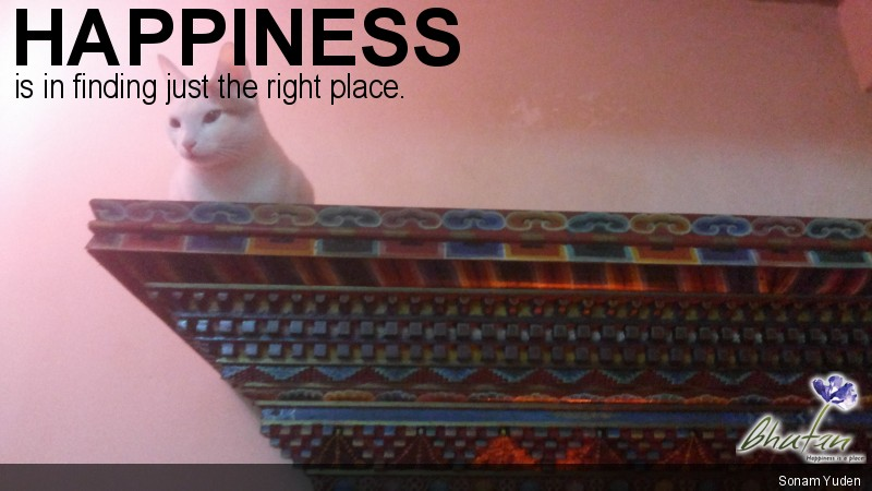 Happiness is in finding just the right place.