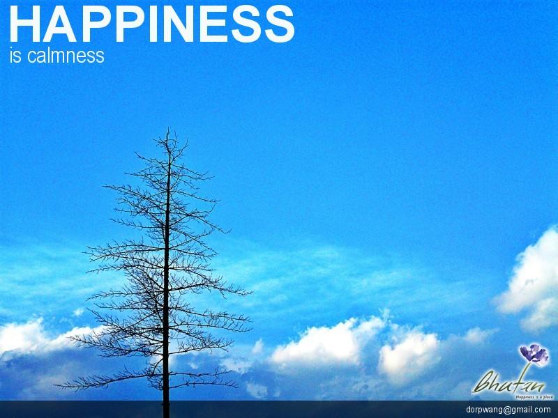 Happiness is calmness