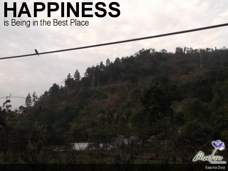 Happiness is Being in the Best Place