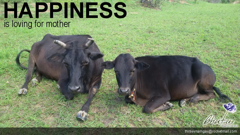 Happiness is loving for mother