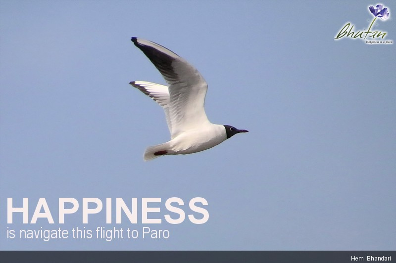 Happiness is navigate this flight to Paro