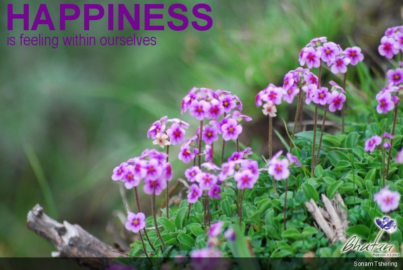 Happiness is feeling within ourselves