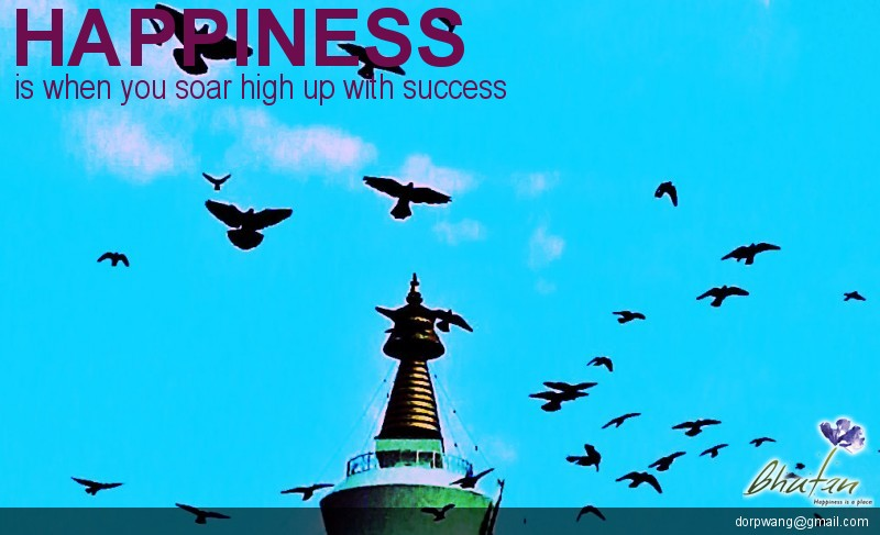 Happiness is when you soar high up with success