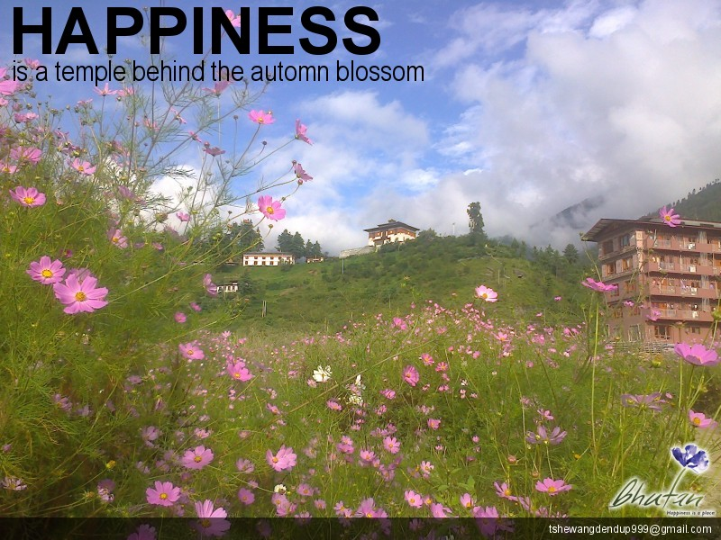 Happiness is a temple behind the automn blossom