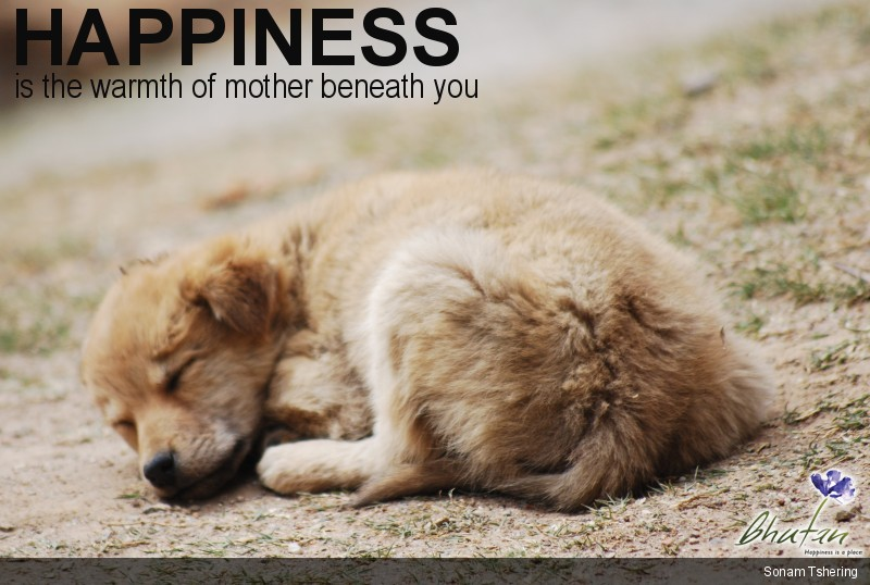 Happiness is the warmth of mother beneath you