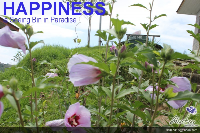 Happiness is Seeing Bin in Paradise