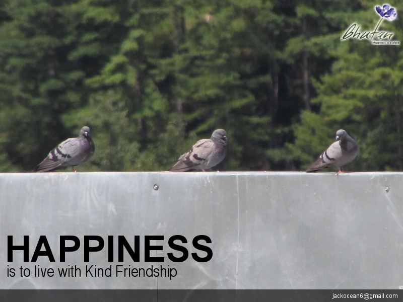 Happiness is to live with Kind Friendship