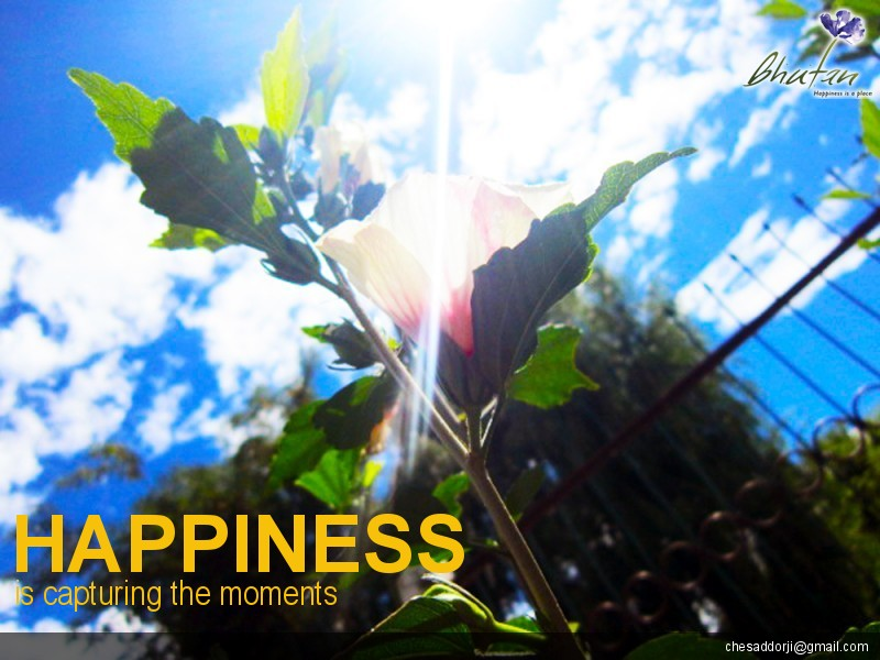 Happiness is capturing the moments