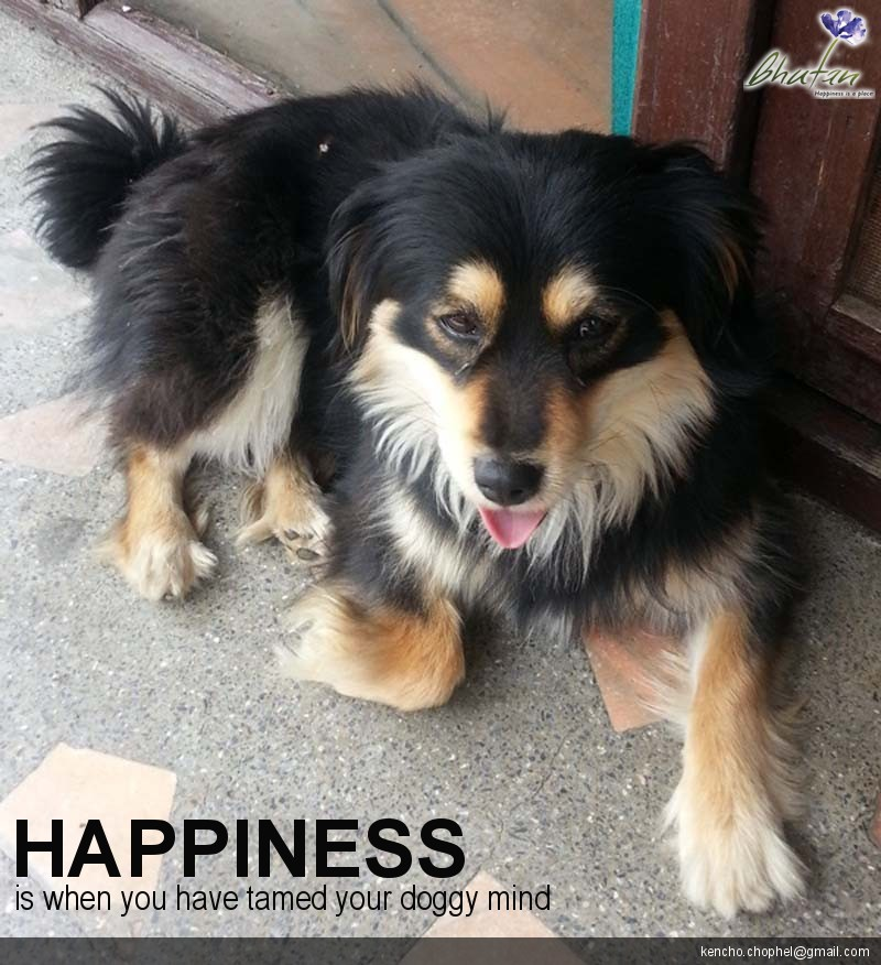 Happiness is when you have tamed your doggy mind