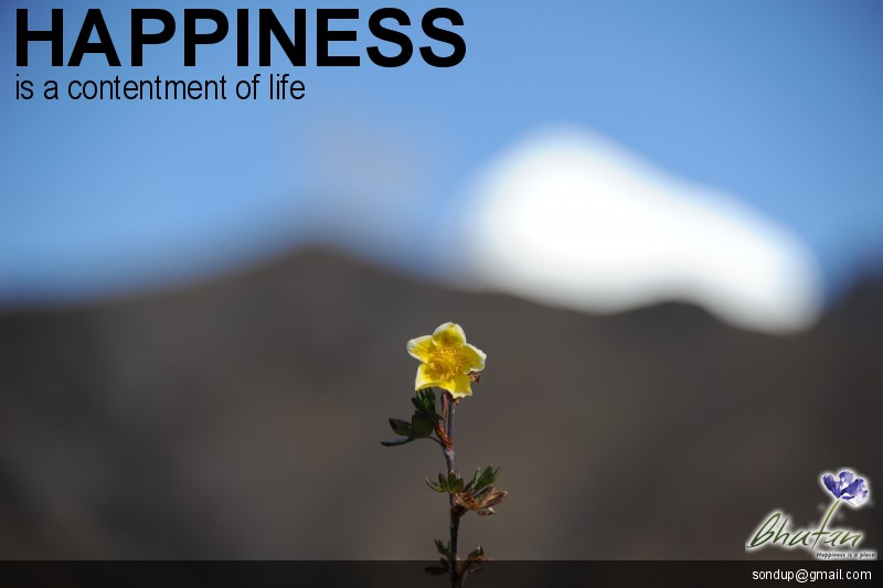 Happiness is a contentment of life