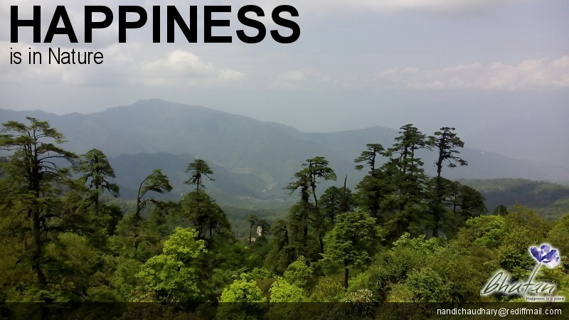 Happiness is in Nature