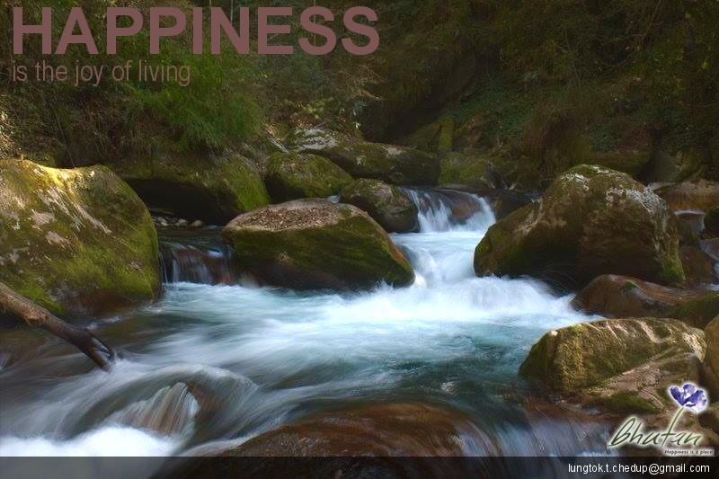 Happiness is the joy of living