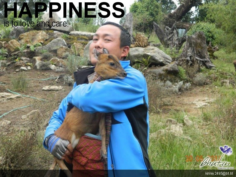 Happiness is to love and care!