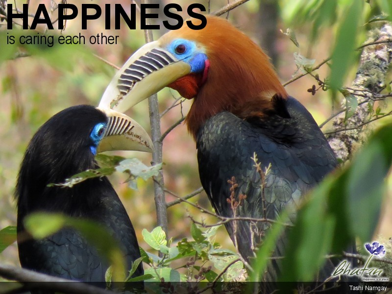 Happiness is caring each other