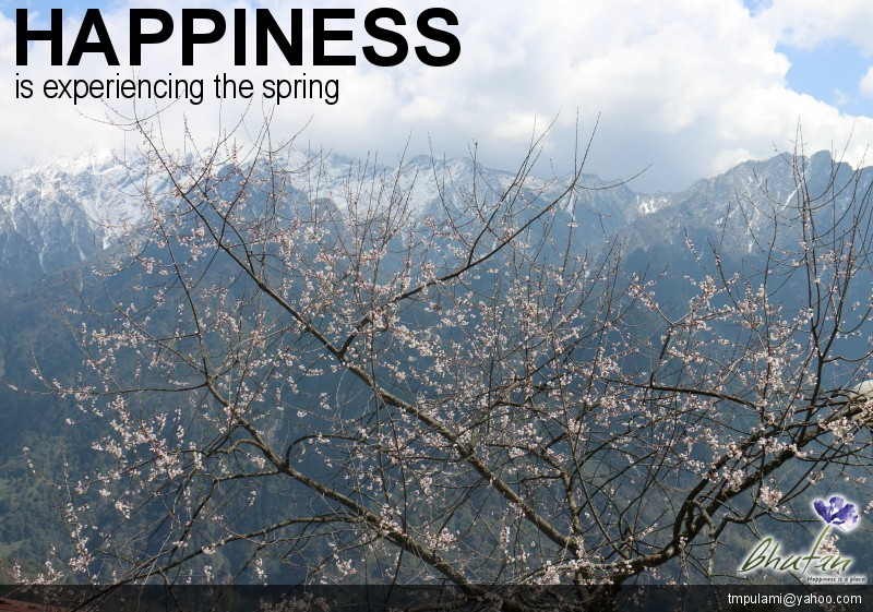 Happiness is experiencing the spring
