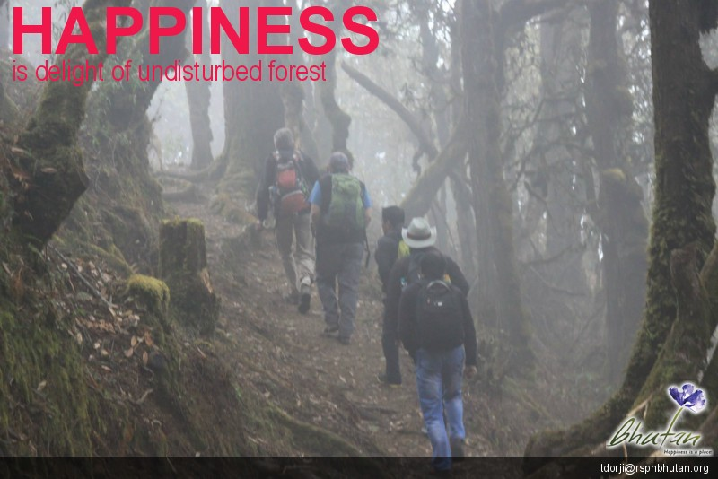 Happiness is delight of undisturbed forest
