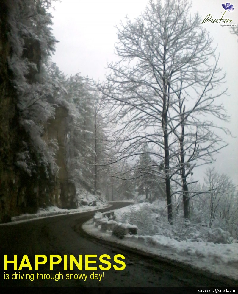Happiness is driving through snowy day!