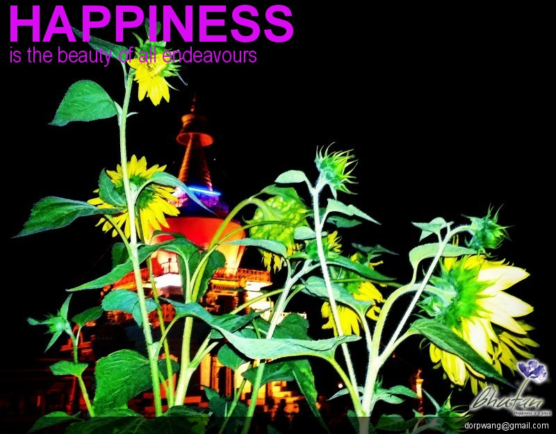 Happiness is the beauty of all endeavours