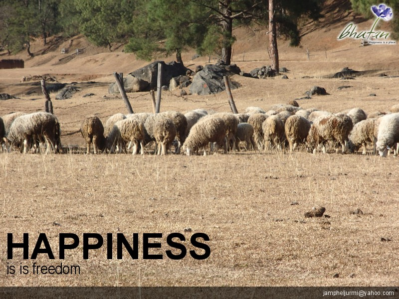 Happiness is is freedom