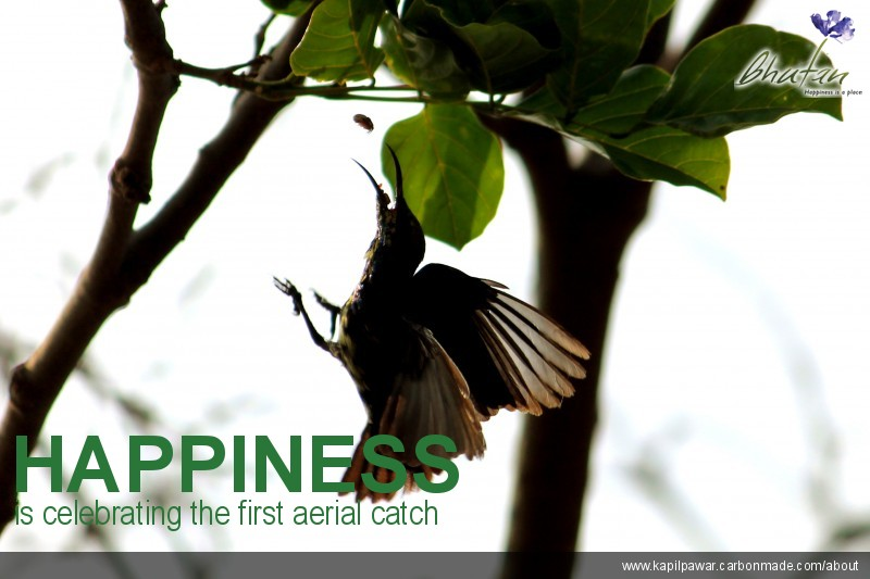 Happiness is celebrating the first aerial catch