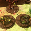more swamp terrain