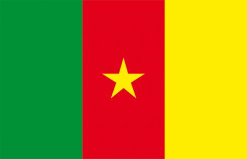 flag_cameroun